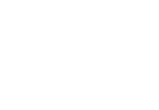 Southern Comfort Limousine | Web Design | TradeBark Savannah GA