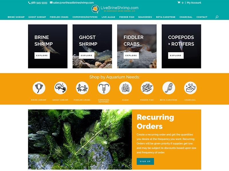 Ecommerce Website Design | TradeBark Savannah GA