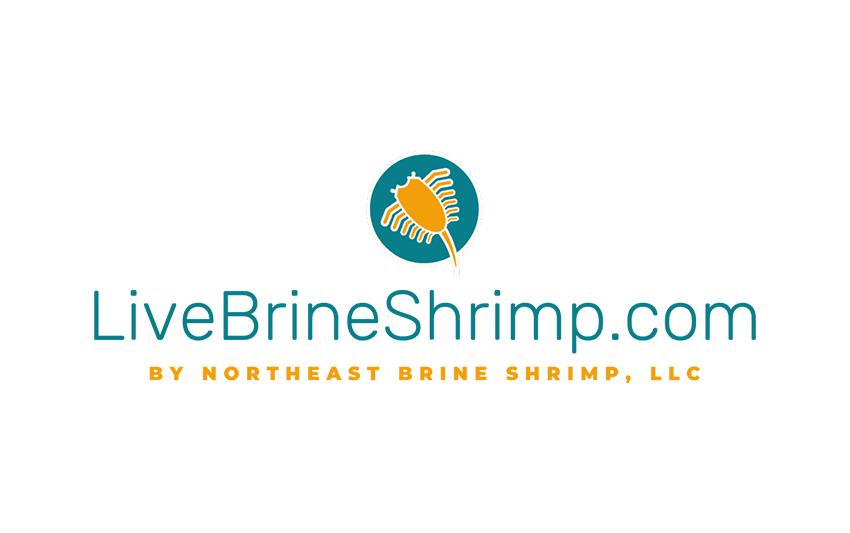 Logo Design | TradeBark Savannah GA